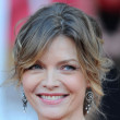 Michelle Pfeiffer's Updo