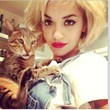 Rita Ora Poses with Her Cat in Overalls