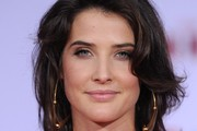 Cobie Smulders Metallic Eyeshadow