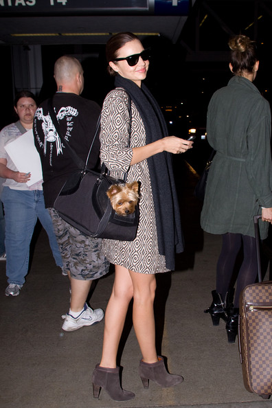 Miranda Kerr Dog Carrier Duffle