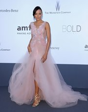 Selita Ebanks looked lovely as a princess in this blush-colored pink tulle dress.