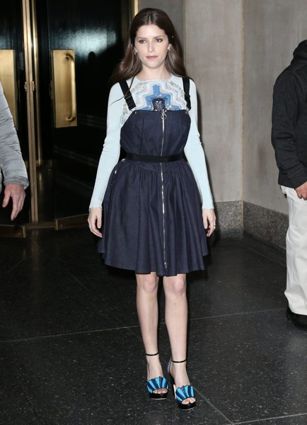 Anna Kendrick Day Dress