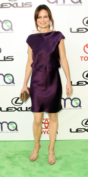 Mary Lynn Rajskub wore a rich eggplant cocktail dress with a sheen for the Environmental Media Awards.