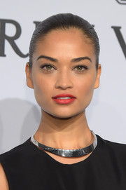Shanina Shaik attended the amfAR New York Gala wearing her hair in a severe Croydon facelift.
