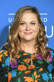 Amy Poehler got all dolled up with this long curly 'do for the 2017 NBCUniversal Upfront.
