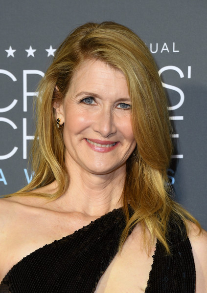 Laura Dern opted for a simple side-parted hairstyle when she attended the 2019 Critics' Choice Awards.