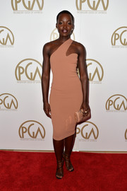 Lupita Nyong'o matched her stylish dress with a Chesneau Heltzel Minaudières snakeskin clutch in the same shade of pink.