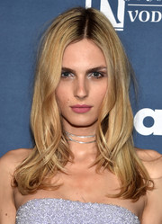 Andreja Pejic looked pretty with her face-framing waves at the GLAAD Media Awards.