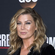 Ellen Pompeo's Windblown Waves