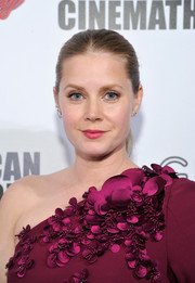 Amy Adams kept it simple with this tight ponytail at the American Cinematheque Award.