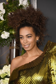 Solange Knowles attended the 2017 Grammys sporting an ultra-glam updo!