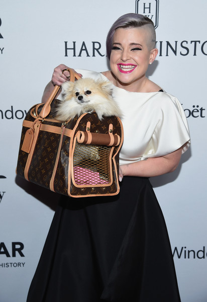 Kelly Osbourne attended the amfAR Inspiration Gala, and she brought her dog along in a luxurious Louis Vuitton carrier.