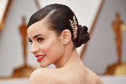 Sofia Carson attended the 2017 Oscars wearing her hair in a slicked-down, twisted bun.