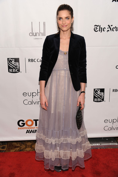 Amanda Peet Evening Dress