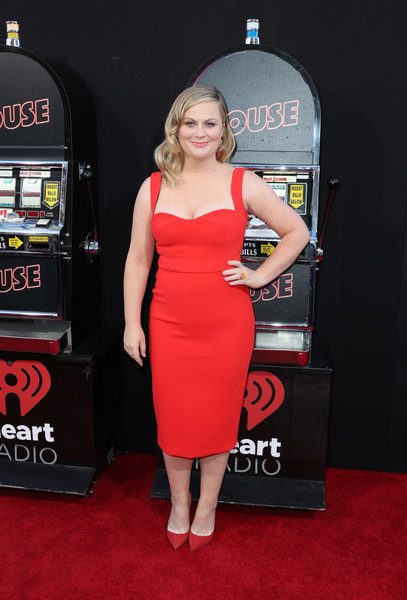 Amy Poehler Form-Fitting Dress