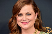 Amy Poehler Half Up Half Down