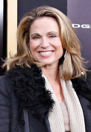 Amy Robach sported subtle layers for added volume to her hair during the 'Anchorman 2' premiere in NYC.