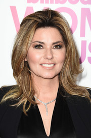 Shania Twain attended the Billboard Women in Music 2016 wearing a '60s-inspired hairstyle.