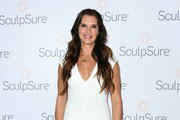 Brooke Shields Form-Fitting Dress