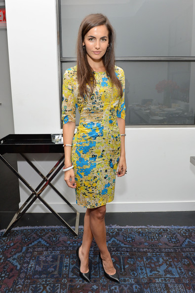 Camilla Belle Print Dress