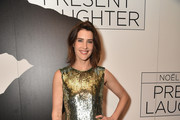 Cobie Smulders Sequin Dress