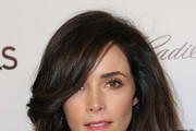 Abigail Spencer Picture