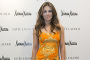 Elizabeth Hurley Print Dress