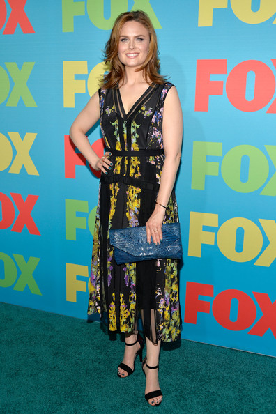 Emily Deschanel Handbags