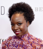 Danai Gurira attended the Evening in China with WildAid event wearing her natural hair.