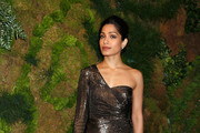 Freida Pinto Evening Pumps