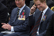 Prince Charles and Prince Harry Photo