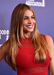 Sofia Vergara wore her tresses down in straight, center-parted layers during the Hollywood Foreign Press Association's Grants Banquet.