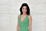 Jaime Murray Print Dress