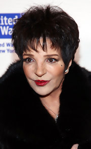 Liza Minnelli proved that red lips are synonymous with glamour at a fundraising concert.