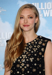 Amanda Seyfried kept her beauty look low-key with some neutral eyeshadow and subtle lipstick.