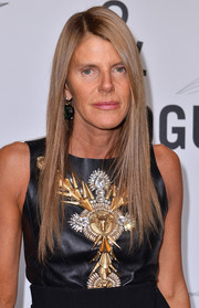 Anna dello Russo attended the Who is On Next event wearing her hair in straight layers.