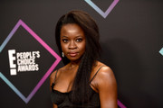 Danai Gurira kept it natural with these kinky tresses at the 2018 People's Choice Awards.