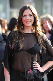 Erin wore her shiny hair in long waves for the 'Iron Man 2' premiere.