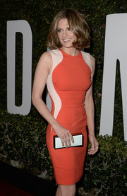 Stana Katic was all about modern minimalism with this Rebecca Minkoff box clutch and Stella McCartney sheath combo at the 'Mandela' premiere.