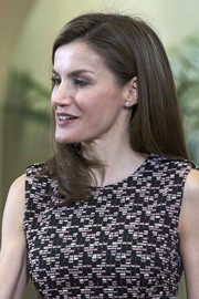 Queen Letizia of Spain attended an audience at Zarzuela Palace wearing a simple side-parted hairstyle.