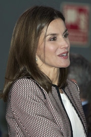 Queen Letizia of Spain attended a Rare Diseases Day meeting wearing a simple straight hairstyle.