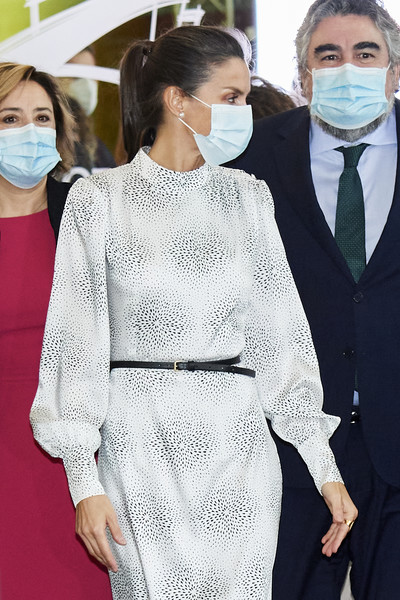Queen Letizia of Spain styled her print dress with a skinny belt for the Tourism Innovation Summit 2020.