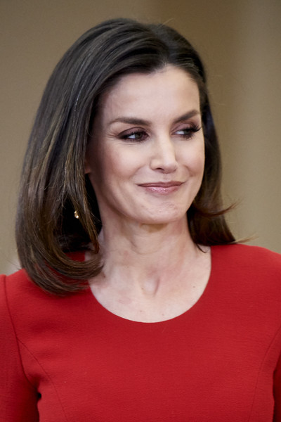 Queen Letizia of Spain Mid-Length Bob [hair,face,hairstyle,eyebrow,chin,beauty,forehead,cheek,lip,brown hair,letizia of spain,premios nacionales del deporte 2017,national sports awards 2017 at the el pardo palace on january,spain,madrid]