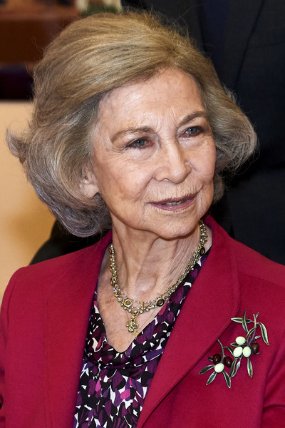 Queen Sofia Bob [hair,chin,official,wrinkle,grandparent,queen,sofia,madrid,spain,reina sofia,school of music,sofia attends a meeting with board of reina sofia,board,meeting]