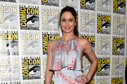 Sarah Wayne Callies Print Dress