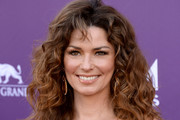 Shania Twain Long Curls