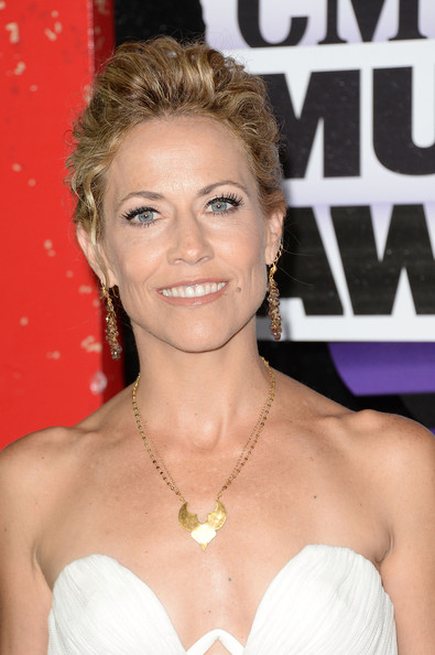 Sheryl Crow Bobby Pinned Updo