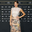 Red Carpet: Shailene Woodley