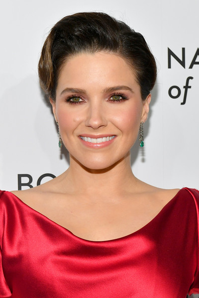 Sophia Bush Retro Updo [hair,face,hairstyle,eyebrow,shoulder,skin,chin,beauty,lip,forehead,arrivals,sophia bush,new york city,cipriani 42nd street,national board of review annual awards gala,national board of review annual awards gala]