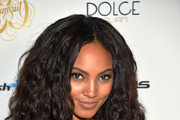 Ariel Meredith Photo